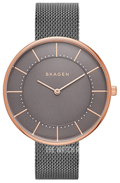 Skagen Gitte Grey/Steel Ø38 mm SKW2584